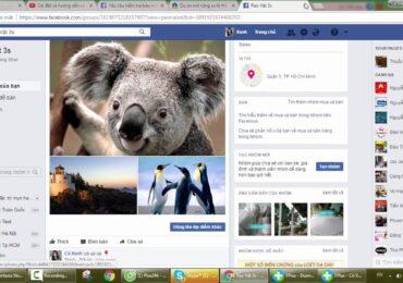 Cách đăng bài vào nhiều nhóm trên facebook 2017 | Hướng dẫn sử dụng FPlus chia sẻ và đăng tin lên nhóm Facebook